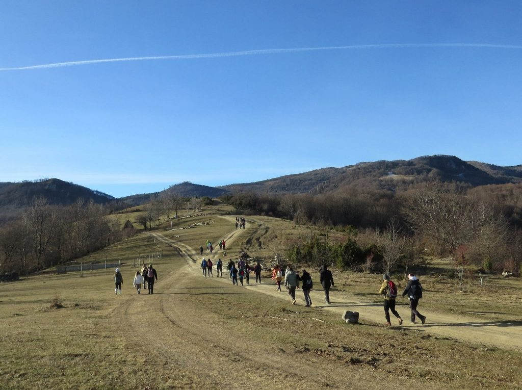 Group of people walking outdoor on a mountain trail.